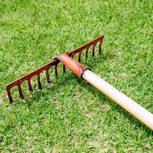 Grabie do trawników