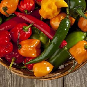 Nawozy do warzyw, owoców i ziół