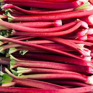 Nasiona rabarbaru