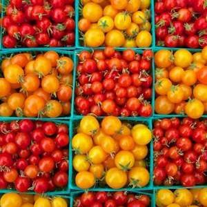 Nawozy do owoców i warzyw