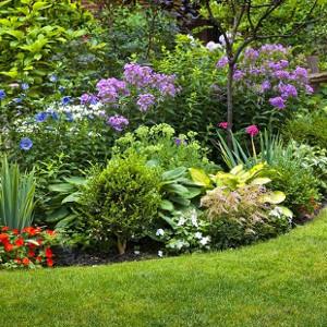Nawozy do roślin ogrodowych